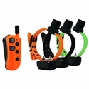 buy discount  DT Systems R.A.P.T. 1450 Upland with Beeper 3-dog Combo