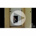 buy discount  VIDEO: Electronic Plexidor Dog Door