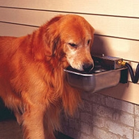 buy  FAQ -- Automatic Dog Waterers