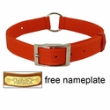 ORANGE Scott Field-Grade Treated Nylon Center-Ring Safety Dog Collar