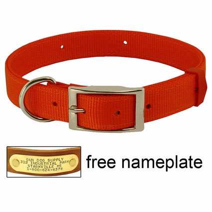 ORANGE Scott Field-Grade Treated Nylon D-End Dog Collar
