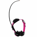 buy discount  Garmin TT15 MINI Pink Collar