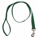 Green 1 in. x 4 ft 1-Ply Nylon Leash