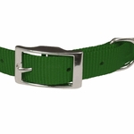 shop Green Nylon Dog Collar Front of Buckle Detail