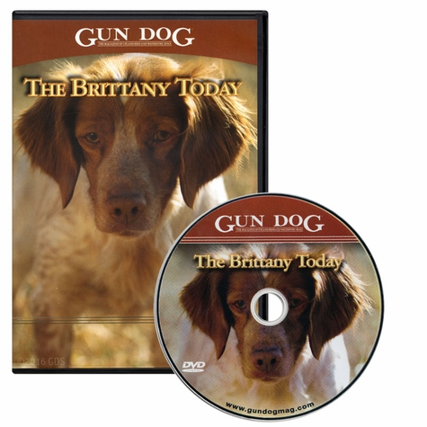 Gun Dog: The Brittany Today DVD