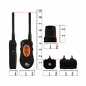 buy discount  H2O 1850 Collar and Transmitter Scaled