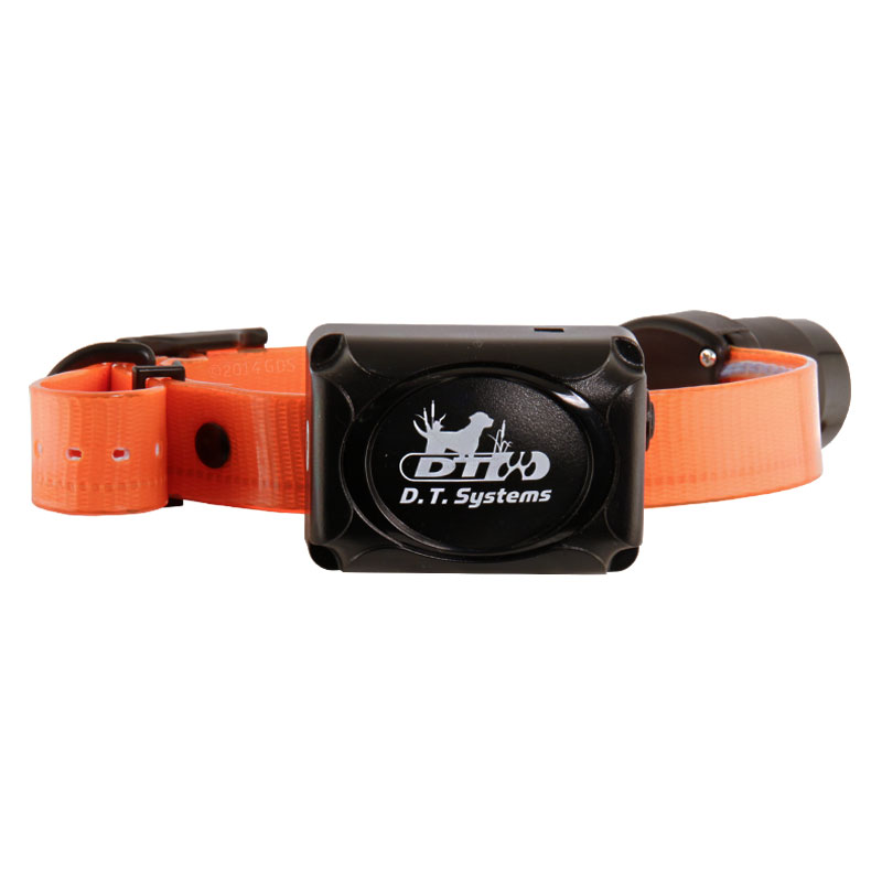 Dt Systems Dog Training Collars Reviews