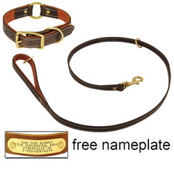 shop K-9 Komfort Premium Deluxe 3/4 in. x 4 1/2 ft. Leash and 1 in. Center Ring Collar -- Brown Latigo with Rust Cowhide Liner