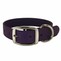 buy discount  K-9 Komfort Purple 1 in. Collar