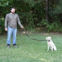 buy discount  K9K 9 Way Lead 5' Configuration