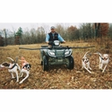 buy discount  K9K Padded Harness in Use on 4-Wheeler