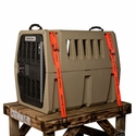 buy discount  Kennel Strapped to Surface
