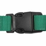 shop Large Tuff Lock Quick Release Collar Back of Buckle Detail