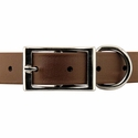 buy discount  DuraSoft Collar Front of Buckle Detail