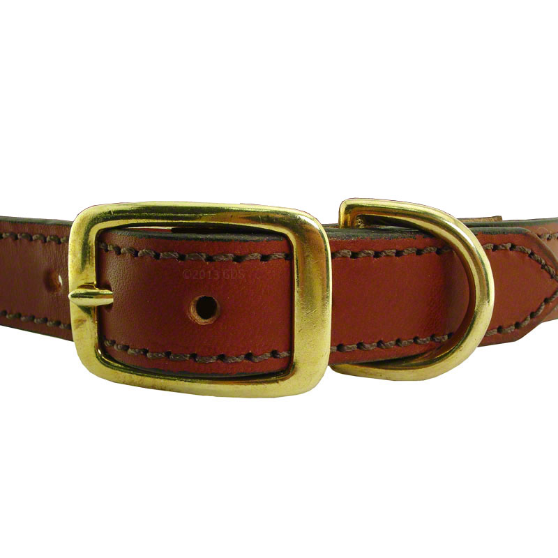Leather Dog Collar With Brass Name Plate