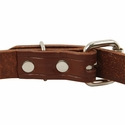 buy discount  Leather Puppy Collar Back of Buckle Detail