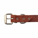 shop Leather Studded Collar Back of Buckle Detail