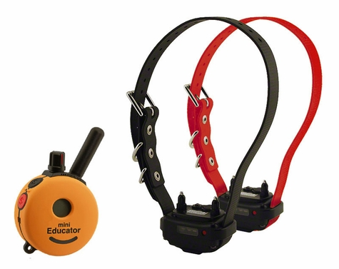 Mini Educator ET-302-A Remote Training Collar 2-dog