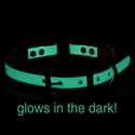 buy discount  Night Glow Center Ring Collar Glow Feature
