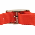 buy discount  Nylon Collar Back of Buckle Detail