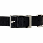 shop Nylon Collar Front of Buckle Detail