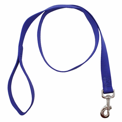 OmniPet 1 in. x 4 ft. 1-Ply Nylon Leash