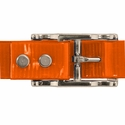 buy discount  ORANGE 1 in. Day Glow Center Ring Collar Buckle Back