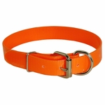 shop Orange D-End Day Glow Collar