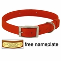 ORANGE Scott Field-Grade Treated Nylon Standard Dog Collar