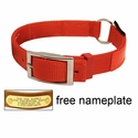 buy discount  Orange Reflexite Center-Ring Safety Dog Collar - #1654