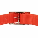 buy discount  Orange Reflexite Collar Back of Buckle Detail