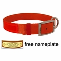 Orange Reflexite Nylon Dee-End Dog Collar - #1674