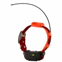 buy discount  Pathfinder TRX Additional Collar -- Red