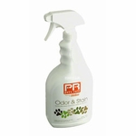 shop Pets Rule Odor & Stain Remover -- 32 oz.