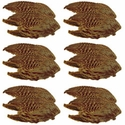 buy discount  Pheasant Wings -- 12 Pack