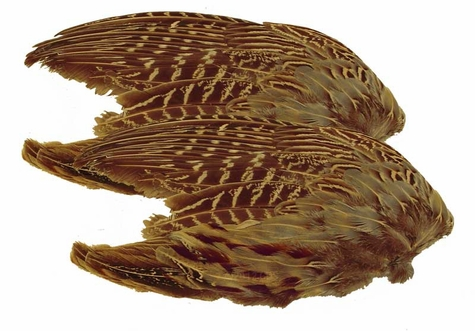Pheasant Wings -- 2 Pack