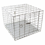 shop Pigeon Carrier 12 in. x 12 in. PC1212/KD by SW Cage