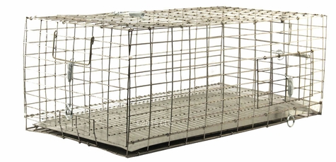 Pigeon Carrier 24 in. x 12 in. PC2412/KD/T by SW Cage