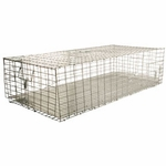 shop Pigeon Carrier 36 in. x 16 in. PC3616/KD/T by SW Cage