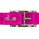 buy discount  PINK 1 in. Day Glow Center Ring Collar Buckle Back