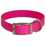 shop Pink Standard Day Glow Collar