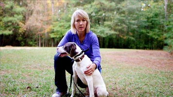 Pro Trainer Robin MacFarlane: How to Train Your Dog