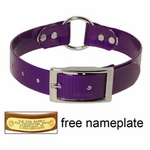 shop PURPLE 1 in. Day Glow Center Ring Collar