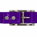 buy discount  PURPLE 1 in. Day Glow Center Ring Collar Buckle Back
