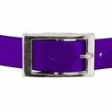 buy discount  PURPLE 1 in. Day Glow Center Ring Collar Buckle Front
