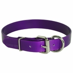 shop Purple D-End Day Glow Collar