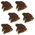 buy discount  Quail Wings -- 12 Pack