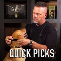 buy  Read Steve's Quick Picks for Dog Training Collars