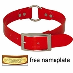 shop RED 1 in. Day Glow Center Ring Collar
