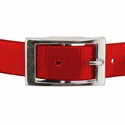 buy discount  RED 1 in. Day Glow Center Ring Collar Buckle Front